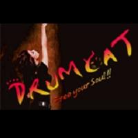 """DRUMCAT(ドラムキャット) """"ザ・ フェスティバル"""""""